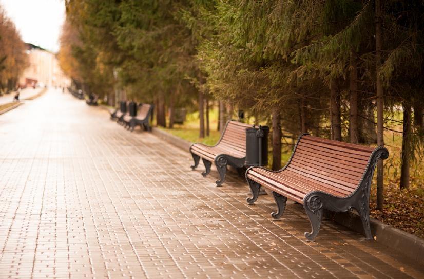 Фото парковых скамеек